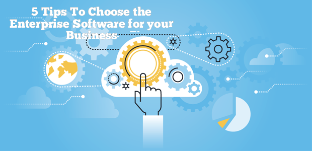 5 Tips To Choose the Enterprise Software for your Business